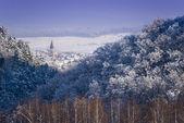 Winter landscape forest village — Stock Photo