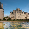 Chenonceau castle in France - Stock Photo