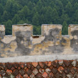Royalty-Free Stock Photo: Defence wall in forest castle