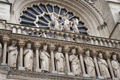 Notre dame cathedral detail paris — Stock Photo