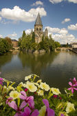 Moselle riverin metz flower in focus — Stock Photo