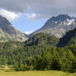 Mountain landscape in switzerland alps — Stock Photo #2531069