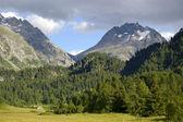 Mountain landscape in switzerland alps — Stock Photo