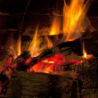 Roaring winter fire - Stock Photo