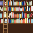 Library shelf full — Foto de stock #2029552