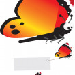 Butterfly set — Stock Photo