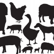 Farm animals sihouette set — Stock Photo