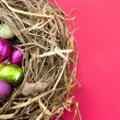 Easter eggs in nest on red - Stock Photo
