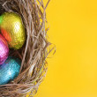 Easter eggs in nest — Stock Photo #2523084