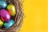 Easter eggs in nest — Stockfoto