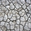 Cracked ground texture - Stock Photo