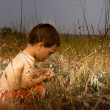 Young child in nature — Foto Stock