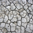 Cracked ground texture — Stock Photo
