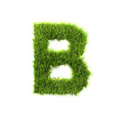 Grass letter - B - Upper case — Stock Photo