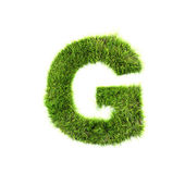 Grass letter - G - Upper case — Stock Photo