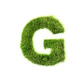 Grass letter - G - Upper case — Stock Photo