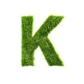 Grass letter - K - Upper case — Stock Photo