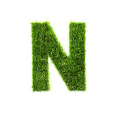 Grass letter - N - Upper case — Stock Photo