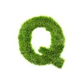 Grass letter - Q - Upper case — Stock Photo