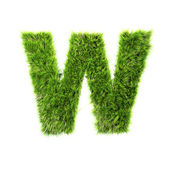 Grass letter - W - Upper case — Stock Photo