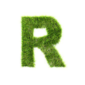 Grass letter - R - Upper case — Stock Photo
