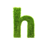 Grass lower-case letter - h — Stock Photo