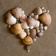 Shell heart on sand - Stock Photo