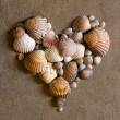Shell heart on sand — Stock Photo