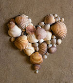 Shell heart on sand — Stockfoto