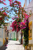 Street in Algarve. — Stock Photo