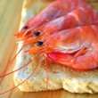 Stock Photo: Shrimps in toast bread.