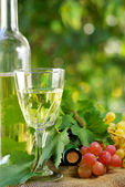 Bottle of wine and grappes. — Stock Photo