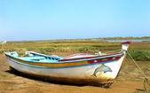 Portuguese boat at Algarve region. — Stock Photo