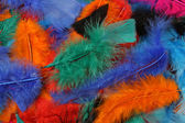 Tło jasne kolorowe pióra — Zdjęcie stockowe