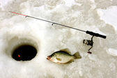 Ice fishing for crappie — Stock Photo