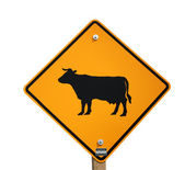 Cattle crossing sign isolated — Stock Photo