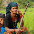 Nepalese Women on green field — Stock Photo