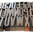 Letterpress wood type arrangement — Stock Photo