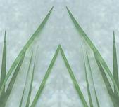 Green leaf blades — Stock Photo