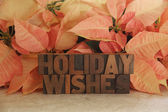 Poinsettia holiday wishes — Stock Photo