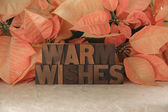 Poinsettia warm wishes — Stock Photo