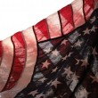 Backlit USA flag — Stock Photo #2575892