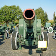 Foto Stock: Big gun