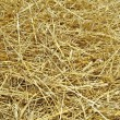 Stock Photo: Hay