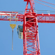 Red crane — Stock Photo #2109044