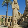 Statue of Ramses II in Karnak — Stock Photo