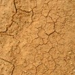 Drought — Stock Photo #2168530