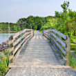 Wooden Bridge — Stock Photo #2003716