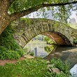 Bridge in Central Park - Stock Photo
