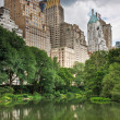 Central Park and New York City - Stock Photo